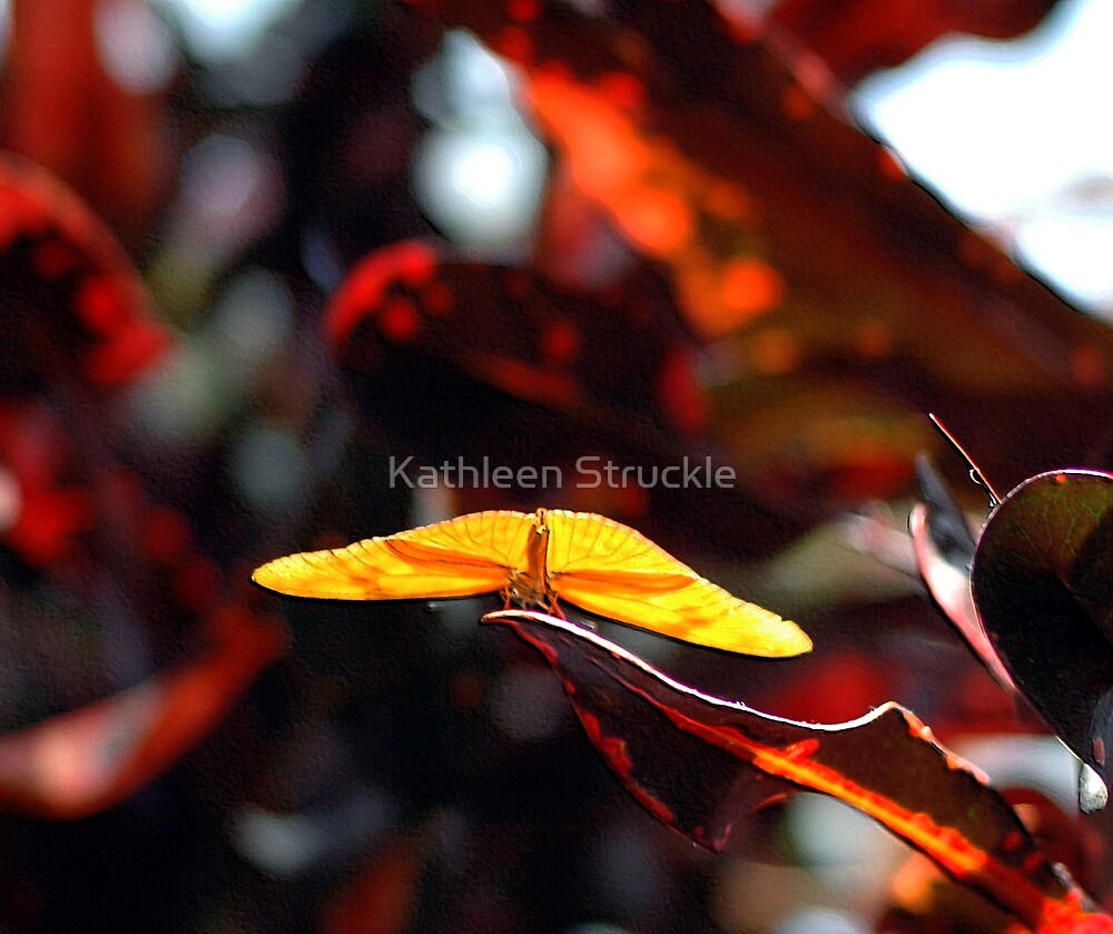 Yellow by Kathleen Struckle