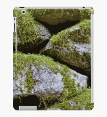 Moss, Rocks, Moss iPad Case/Skin