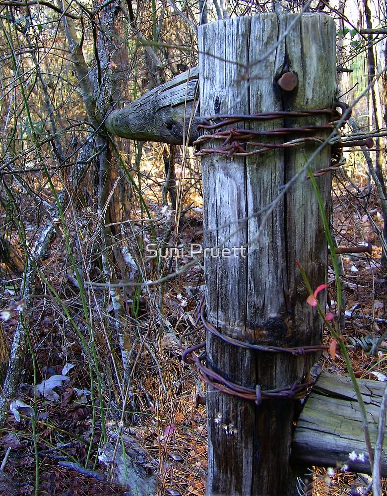 Cornerpost by Suni Pruett