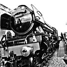 Flying Scotsman at Bluebell Railway (B&W) by mdench
