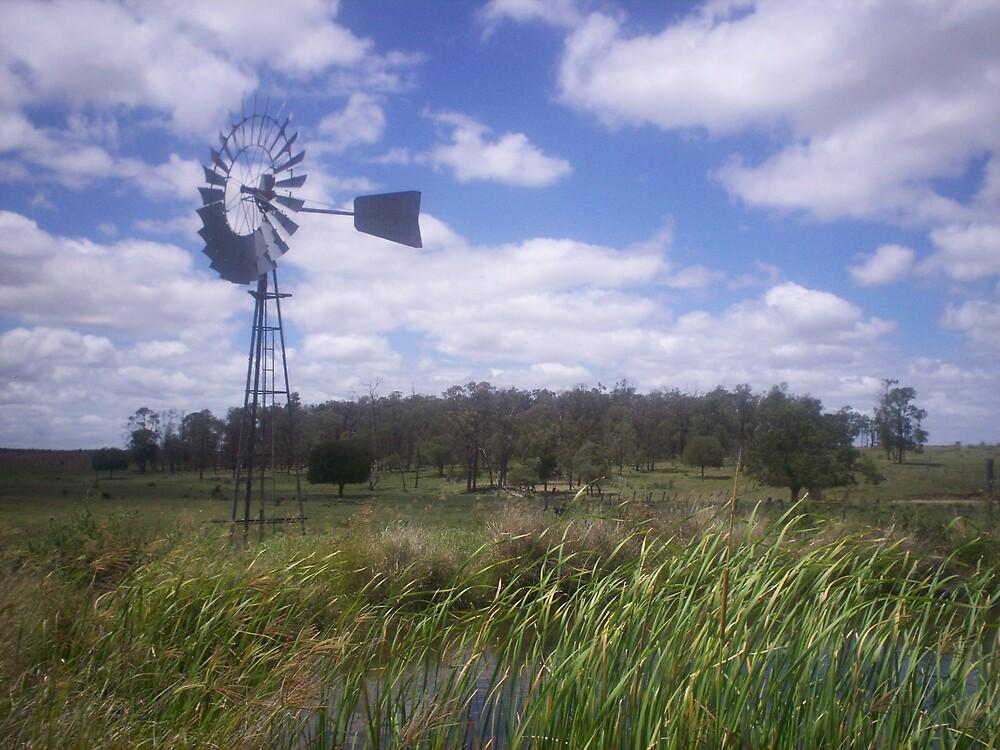 The Windmill by Chantel Martin