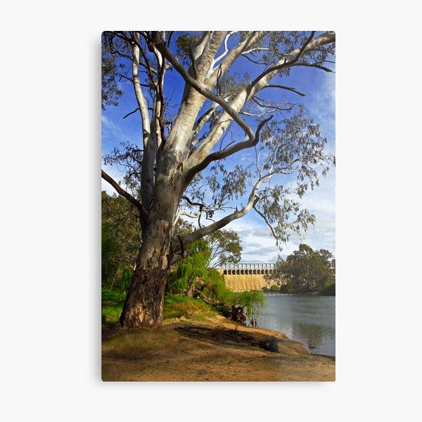 Murray River at Lake Hume Metal Print