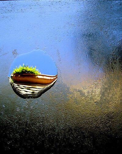 wet by ezebee