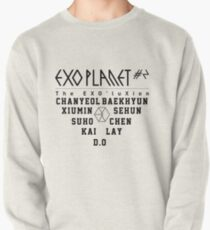 Exo Planet Pullover