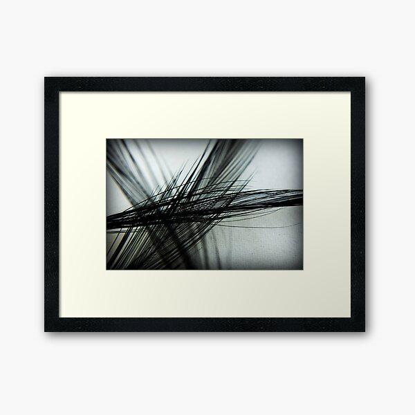 Softly, Softly Framed Art Print
