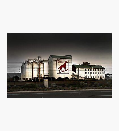Dingo Flour Mill - Fremantle Western Australia  Photographic Print