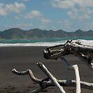 Driftwood Sculpture by Danielle Kennedy Boyd