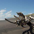 Beach sculpture by Danielle Kennedy Boyd