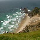 Cape Reinga - the place where two seas meet by Danielle Kennedy Boyd