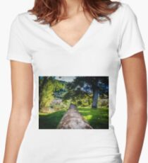 Along The Park Post Women's Fitted V-Neck T-Shirt