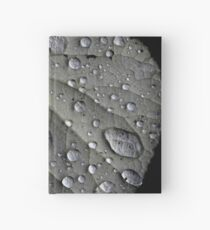 Rain Drops on a Leaf Hardcover Journal