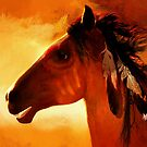 Apache  by Valerie Anne Kelly