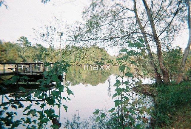 lakeside mirror by maxx