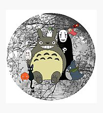 Studio Ghibli: Totoro, Jiji, Calcifer, Forest Spirit, Ponyo, Rat, Fly, Soot Sprite (customisable check artist notes) Photographic Print