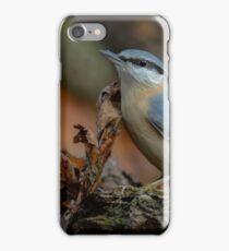 Nuthatch (Sitta europaea Linnaeus) iPhone Case/Skin