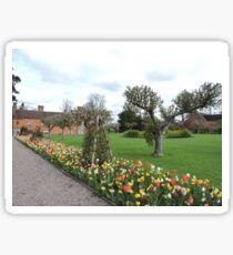 Tulip Line Sticker