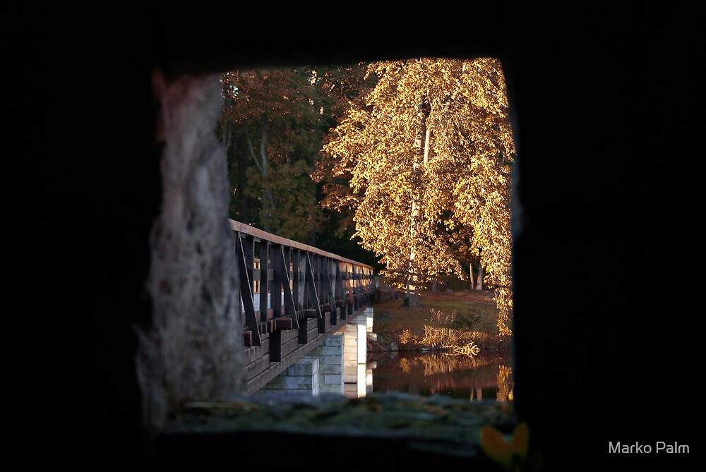Golden Autumn! by Marko Palm