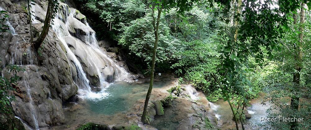 Waterfall in Chiapas by Peter Fletcher
