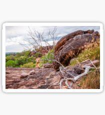 Bushwalking in Kakadu, NT, Australia Sticker