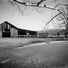 Tennessee Barnyard by © Joe  Beasley IPA