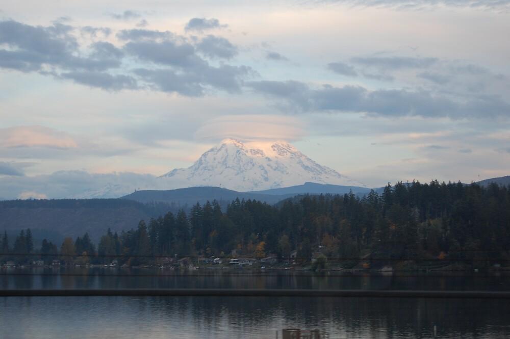 Mount Rainier At A Distance by mrsnichols