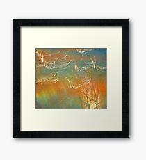 Dazzling lights III Framed Print