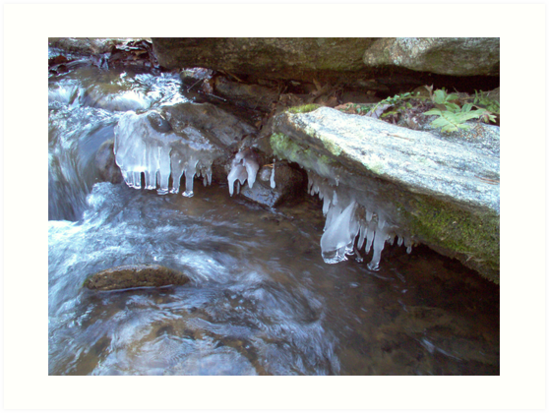 Icy Stream by Allen Carr
