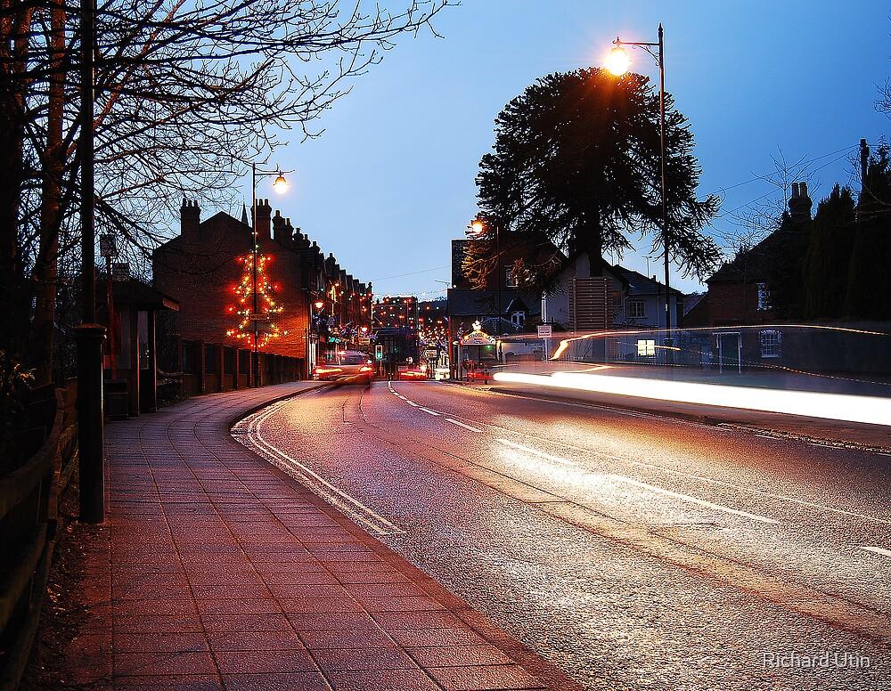 Reflecting the night by Richard Utin