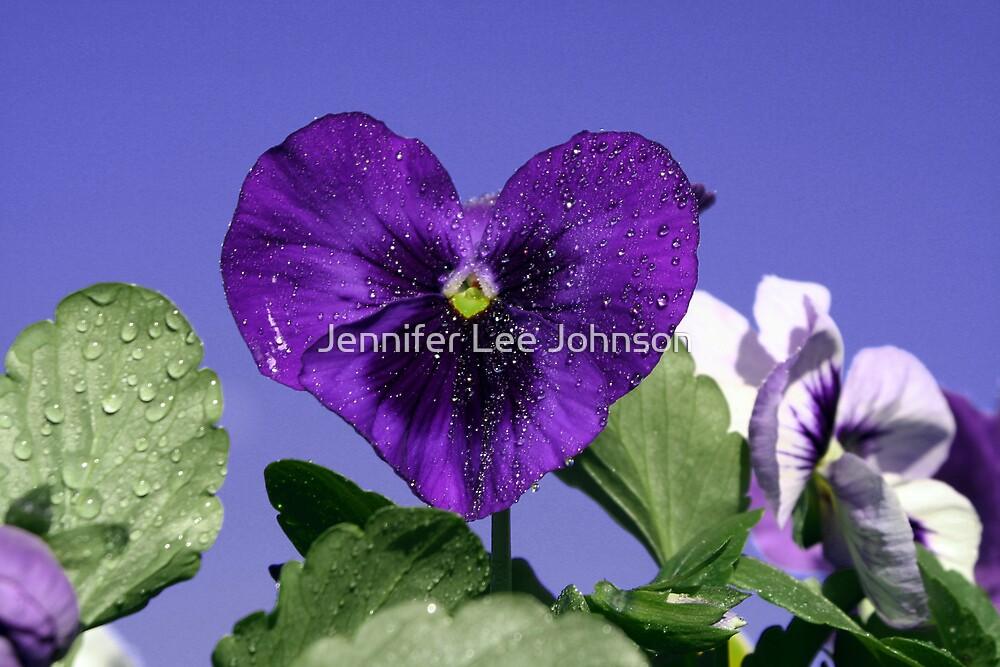 Pansy Heart by Jennifer Lee Johnson