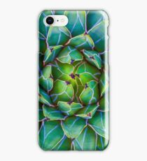 Succulent succulent iPhone Case/Skin