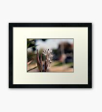 Natures Simplistic Beauty Framed Print