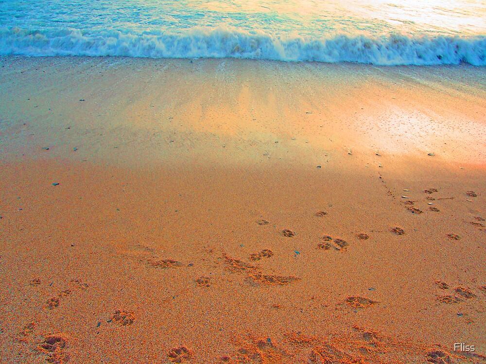 Footprints by Fliss