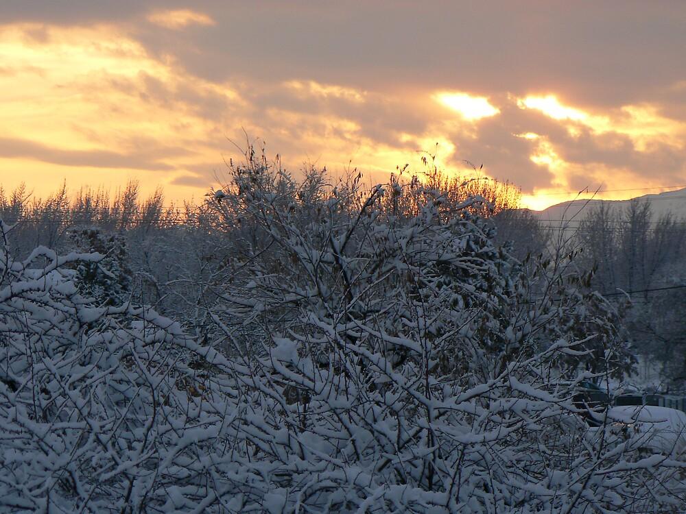 winter dusk by greenlady