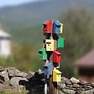 Bird Houses on a Pole by Wayne King