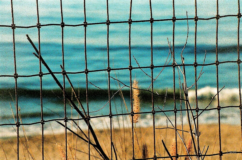 Fence @ Summerland Beach by Lexi