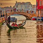 Adventure in Venice by Viv Thompson