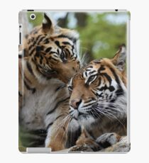 Tigers showing affection iPad Case/Skin