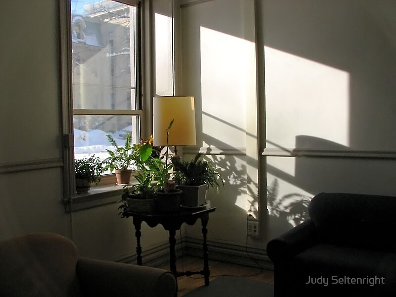Light & Shadows by Judy Seltenright