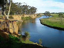 Werribee River and the Tree - Werribee, Vic. Australia by EdsMum