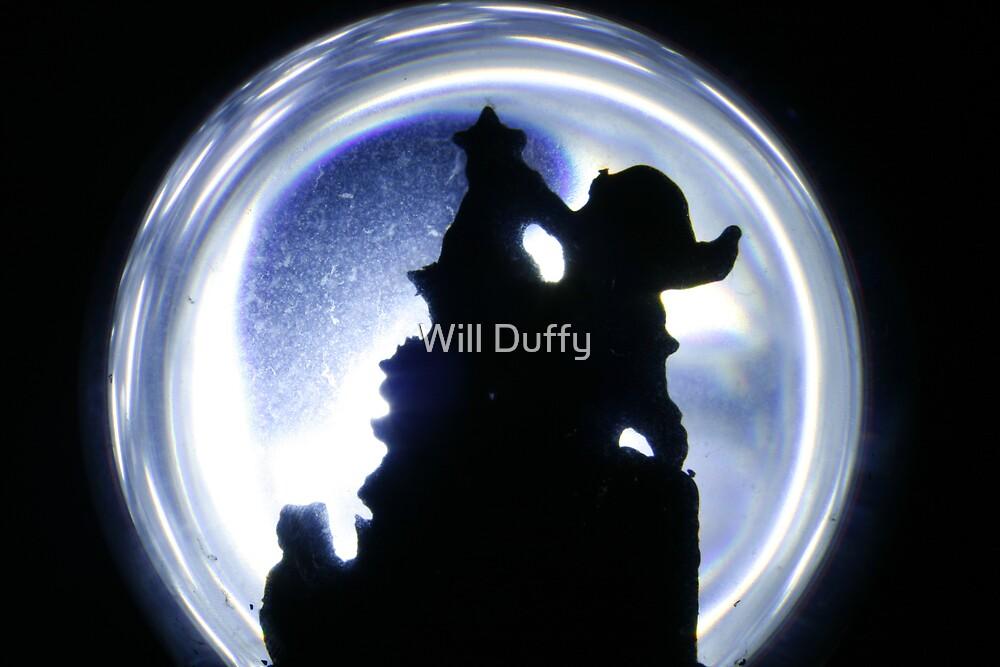 Santa's Globe  by Will Duffy