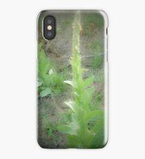 Lone Mullein  iPhone Case/Skin