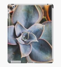 close up of succulent iPad Case/Skin