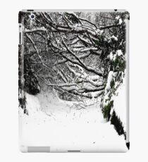 SNOW SCENE 5 iPad Case/Skin
