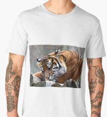 Sleeping tiger Men's Premium T-Shirt