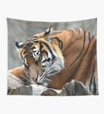 Sleeping tiger Wall Tapestry