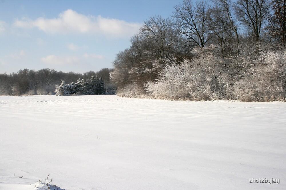 Snowy Field and Woods by shotzbyjay