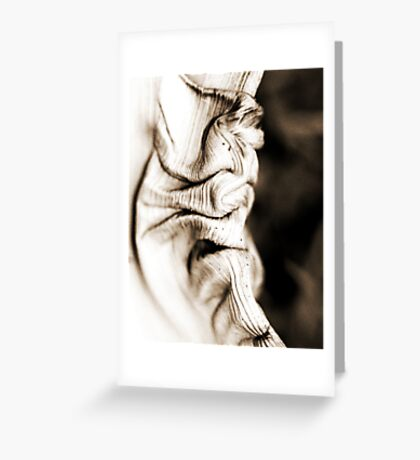 Twisted Palm Frond Greeting Card