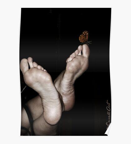 Pies y mariposa Poster