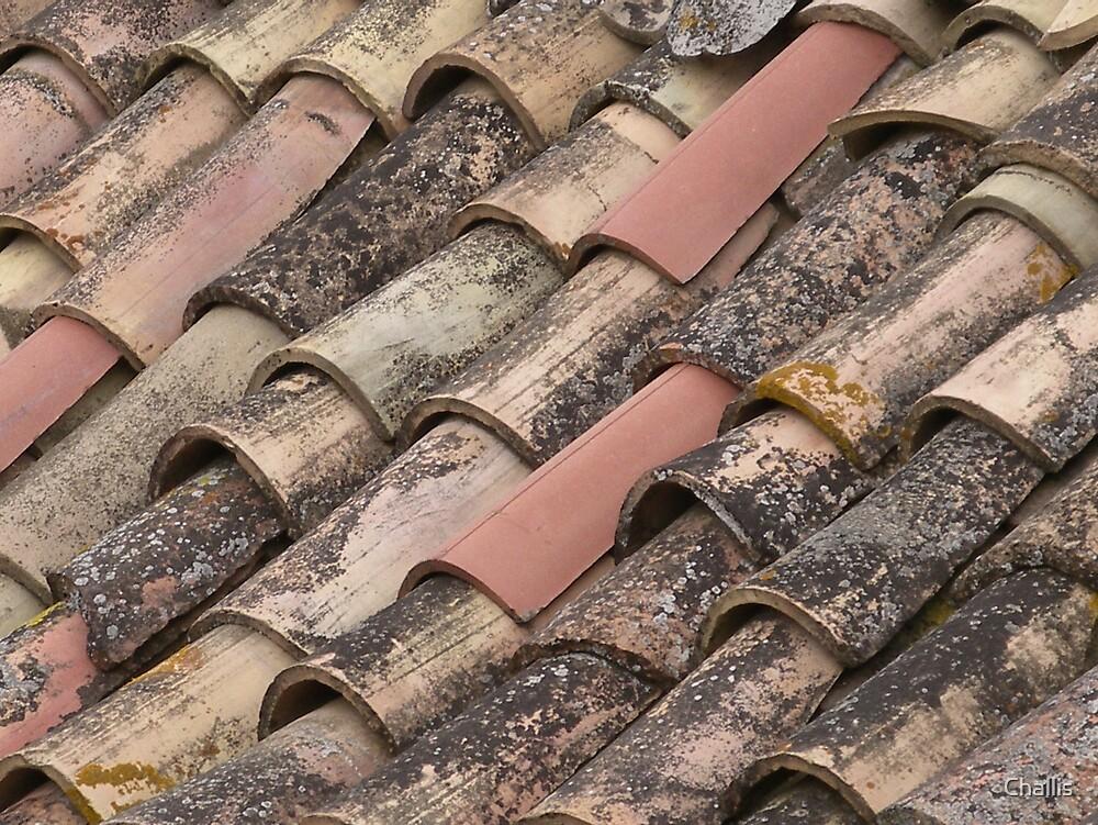 Italian Roof Tiles by Challis