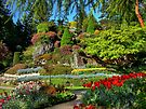 BUTCHART Gardens in Spring, by AnnDixon